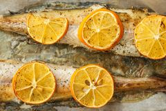 Baked pollock fish with spices and lemon.  royalty free stock photos
