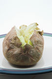 Baked Potato. A closeup of a hot baked potato Stock Photos