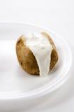 Baked Potato. A Baked Potato with soour cream on a white styrofoam plate stock photography