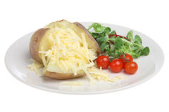 Baked Potato with Cheddar Cheese Stock Photography