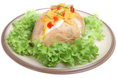 Baked Potato with Sour Cream & Cheese Royalty Free Stock Photo