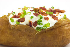 Baked potato with toppings. Baked russet potato with sour cream, bacon bits and green onion closeup Royalty Free Stock Photography