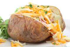 Baked Potato With Cheese & Ham Stock Images