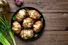 Baked potatoes with bacon, green onion and cheese Stock Image