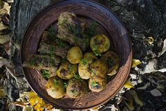 Baked potatoes with pork ribs on the fire laid out on a clay plate, decorated with greens. Dinner in nature royalty free stock photos