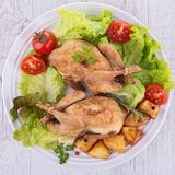 Baked quail. Plate of fresh baked quail Royalty Free Stock Photos