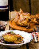 The baked quails with cowberry sauce Stock Photos