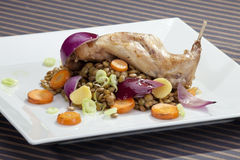 Baked rabbit leg with lentil and vegetable Stock Image