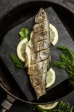 Baked rainbow trout fish with dill and lemon. Restaurant. Seafood royalty free stock images