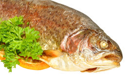 Baked Rainbow Trout Fish Stock Photo