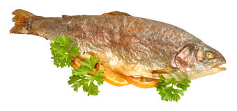 Baked Rainbow Trout Fish Royalty Free Stock Photography