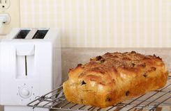 Baked Raisin Bread Royalty Free Stock Photos