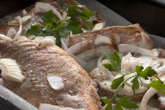 Baked rosefish Stock Photos