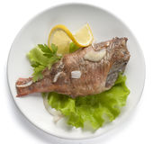 Baked rosefish Royalty Free Stock Photo