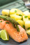 Baked Salmon with Asparagus Stock Photography