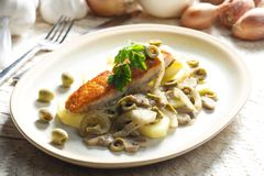 Baked salmon on champignons, onion and olives. Inside, indoor, indoors, interior, interiors, gastronomy, cuisine, foodstuff, aliment, aliments, meal, meals royalty free stock photography