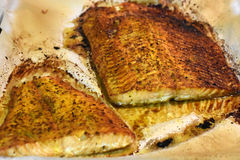 Baked salmon. Close on a board with baked salmon Royalty Free Stock Photo