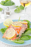 Baked salmon fillet with lemon Stock Photography