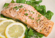 Baked Salmon Fillet Stock Image