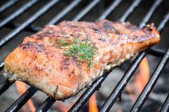 Baked salmon on the grill with fire. Closeup of baked salmon on the grill with fire Royalty Free Stock Image