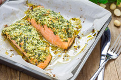 Baked salmon with macadamia-cilantro crust Royalty Free Stock Images