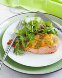 Baked salmon with mustard sauce Royalty Free Stock Photos