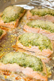 Baked salmon with pesto and cheese Royalty Free Stock Image