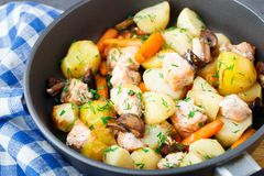 Baked salmon with potato, mushrooms and carrot Stock Photos