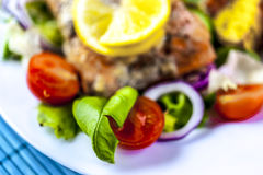 Baked salmon on salad with potatoes Stock Photography