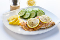 Baked Salmon with Sliced Lemons and Cucumbers Royalty Free Stock Image
