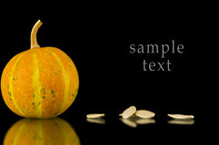 Baked and Salted Pumpkin Seeds on a background Stock Photo