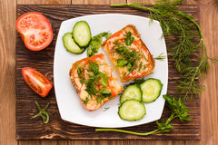 Baked sandwiches with tomato, cheese and greens and sliced vegetables Stock Photo