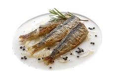 Baked sardines Stock Photo