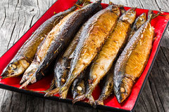 Baked saury on a red rectangular dish , close-up top view Stock Images