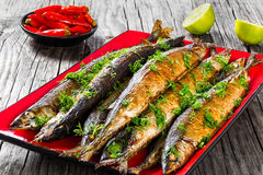 Baked saury on a red rectangular dish , close-up top view Royalty Free Stock Images