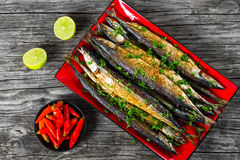 Baked saury on a red rectangular dish , close-up top view Stock Photos