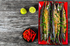 Baked saury on a red rectangular dish , close-up top view Royalty Free Stock Image