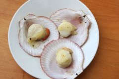 Baked scallops Stock Photos