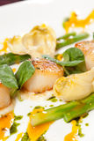 Baked scallops with asparagus Stock Photos