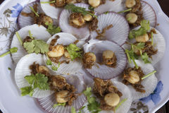 Baked scallops with butter and garlic in shell Stock Photo