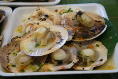 Baked scallops dish foam. Royalty Free Stock Image