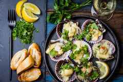 Baked scallops with lemon, cilantro, bread and white wine. Seafood. Shellfish. Baked scallops on black plate with lemon, cilantro, bread and white wine on wooden Royalty Free Stock Images