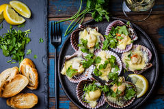 Baked scallops with lemon, cilantro, bread and white wine. Seafood. Shellfish. Baked scallops on black plate with lemon, cilantro, bread and white wine on wooden Stock Images
