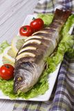 Baked sea bass with lemon, lettuce and tomatoes. vertical Stock Photos