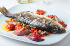 Baked sea bass with vegetables. On a dish Royalty Free Stock Photo