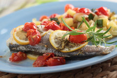 Baked sea bass with vegetables Royalty Free Stock Photos