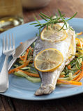 Baked sea bass with vegetables Stock Images