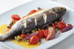 Baked sea bass with vegetables. On a rectangular dish stock photography
