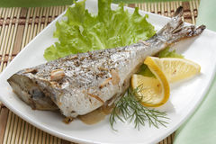 Baked Sea Bream Stock Image