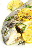 Baked sea bream. Oven baked gilt head sea bream (sparus aurata) with thyme, basil and lemon royalty free stock photo